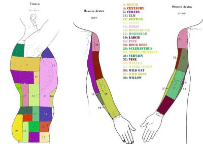 kramer-busto-braccio-dx